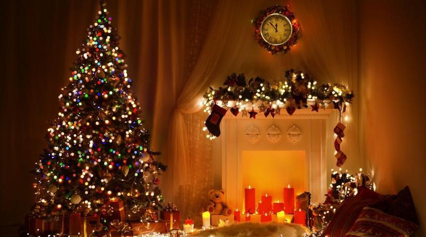 Radosnych Świąt i Szczęśliwego Nowego Roku !