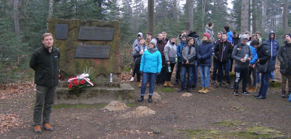 Wycieczka w Lasy Cisowskie z okazji Dni Patrona Szkoły